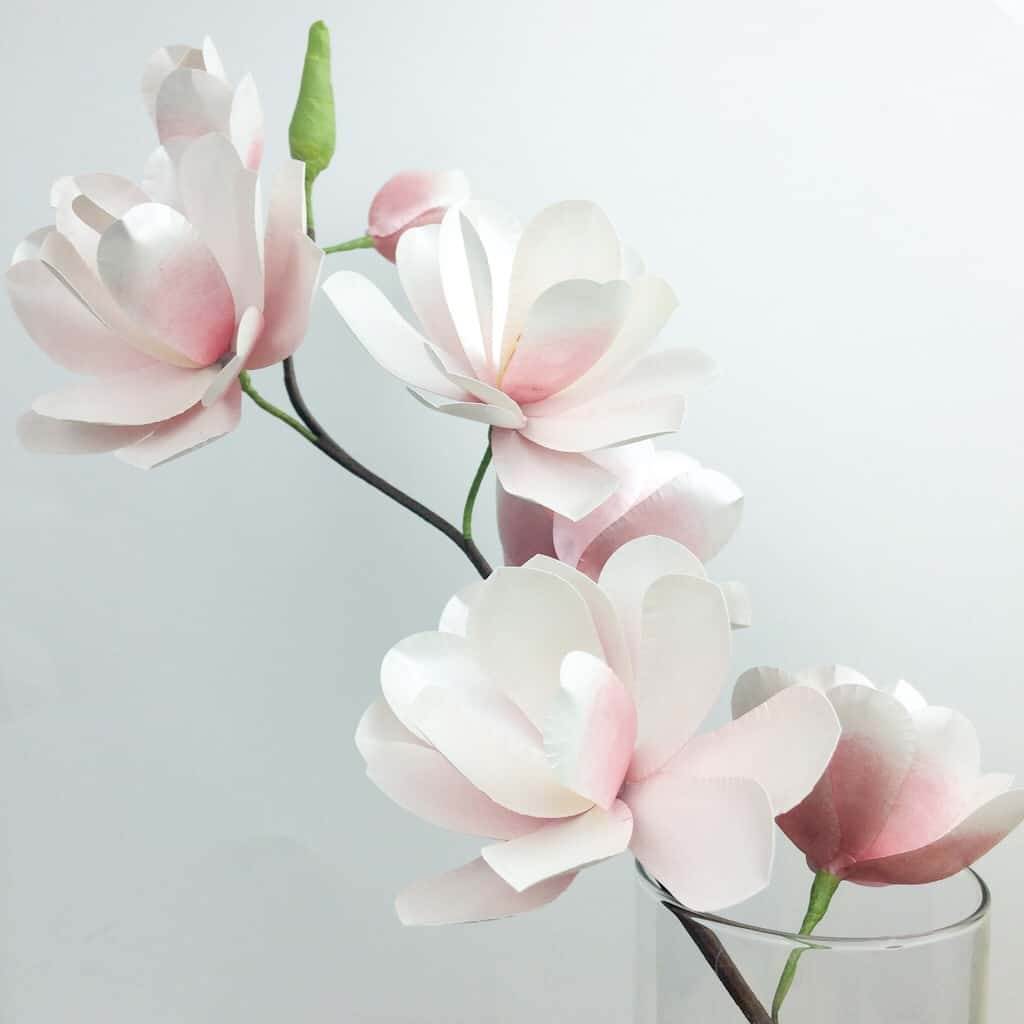 Diy paper flower template, paper craft, magnolia paper flower,