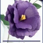 lisianthus paper flower template