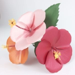 Read more about the article The Best Paper Hibiscus Making Guide- With Video Tutorial