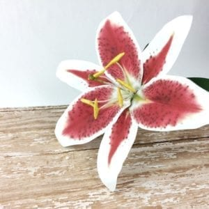 How to Make a Paper Stargazer Lily