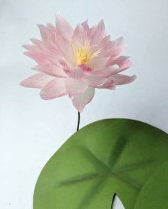 Read more about the article How to Make Crepe Paper Lotus